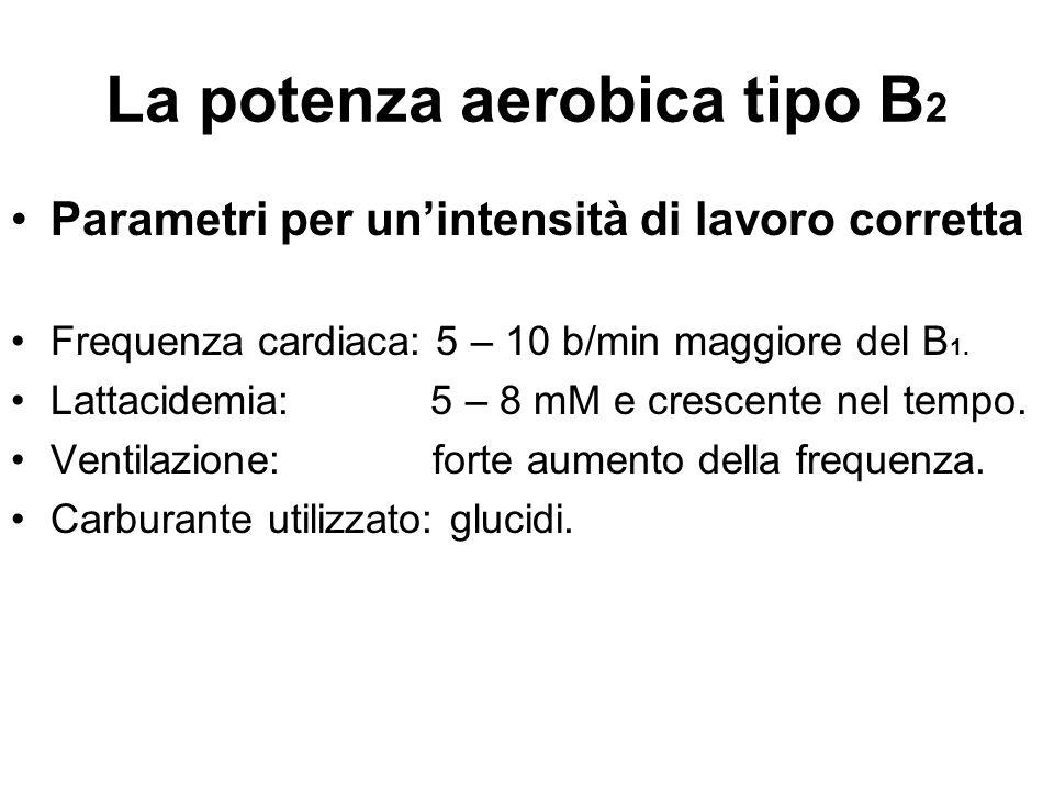 La potenza aerobica tipo B 2 Parametri per un'intensità di lavoro corretta Frequenza cardiaca: 5 – 10 b/min maggiore del B 1. Lattacidemia: 5 – 8 mM e