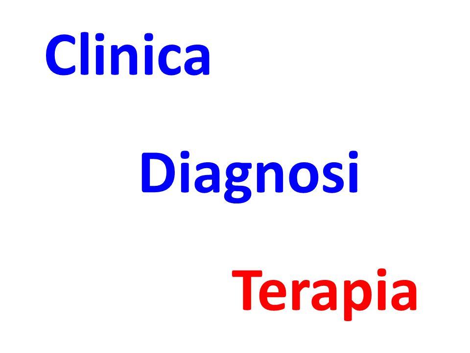 Clinica Diagnosi Terapia