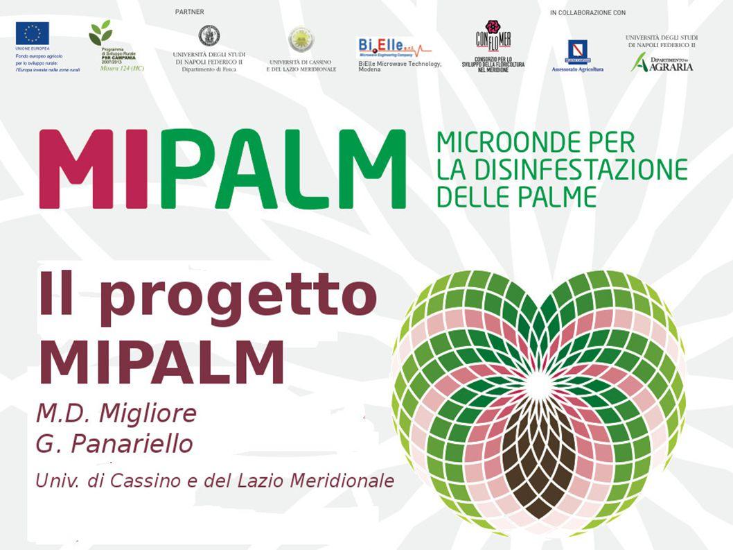 Prof.E. Caprio Prof. R. Sasso Prof. G. Panariello, Prof.