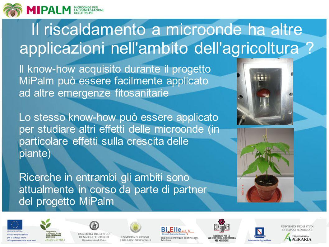 Il riscaldamento a microonde ha altre applicazioni nell'ambito dell'agricoltura ? Il know-how acquisito durante il progetto MiPalm può essere facilmen
