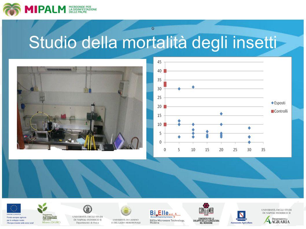 Studio della mortalità degli insetti G
