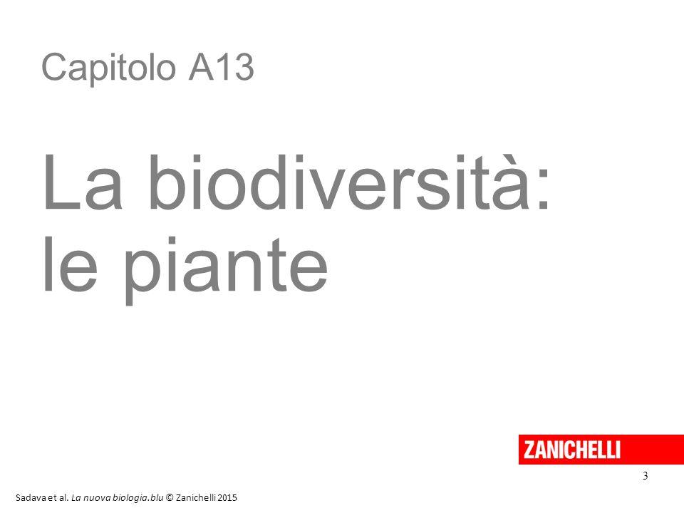 Capitolo A13 La biodiversità: le piante 3 Sadava et al. La nuova biologia.blu © Zanichelli 2015