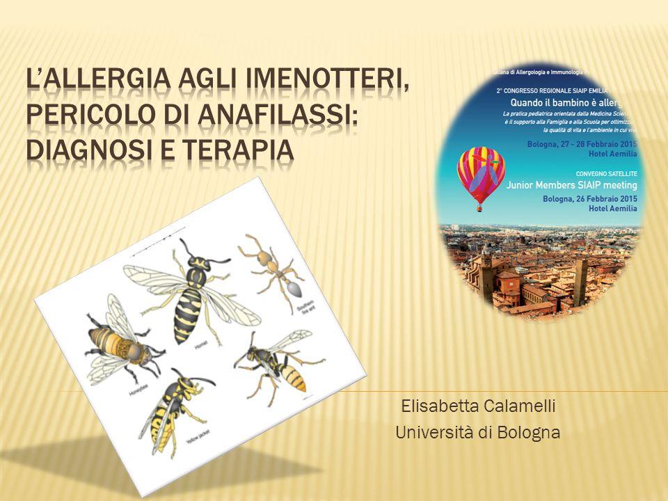 Elisabetta Calamelli Università di Bologna