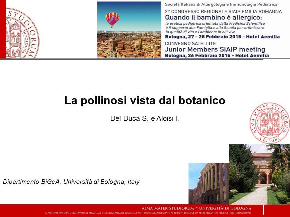La pollinosi vista dal botanico Del Duca S. e Aloisi I. Dipartimento BiGeA, Università di Bologna, Italy