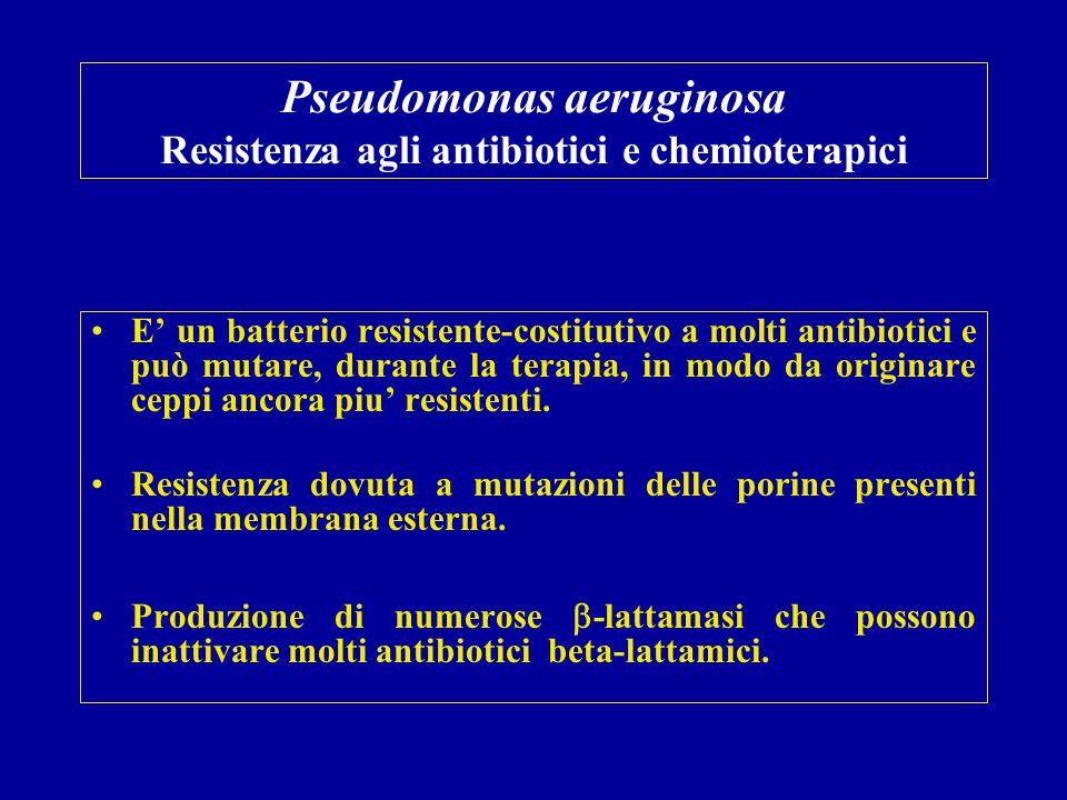 Pseudomonas aeruginosa Resistenza agli antibiotici e chemioterapici E' un batterio resistente-costitutivo a molti antibiotici e può mutare, durante la