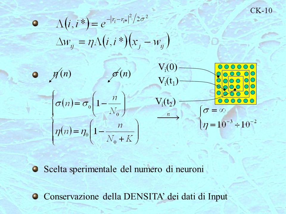 CK-10 Scelta sperimentale del numero di neuroni Conservazione della DENSITA' dei dati di Input  (n)  (n) V i (0) V i (t 1 ) V i (t 2 )