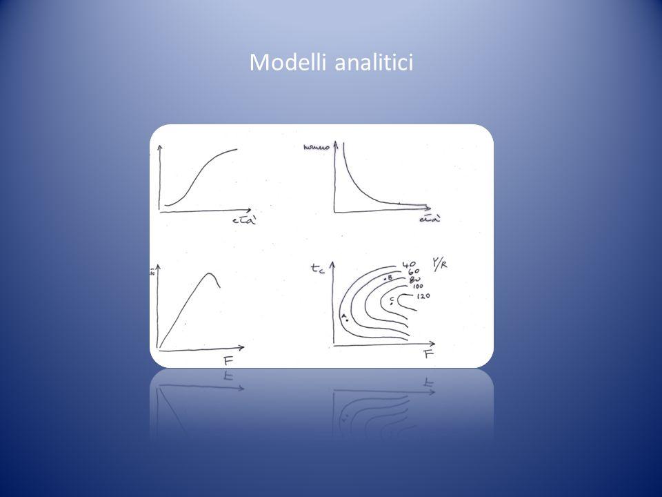Modelli analitici