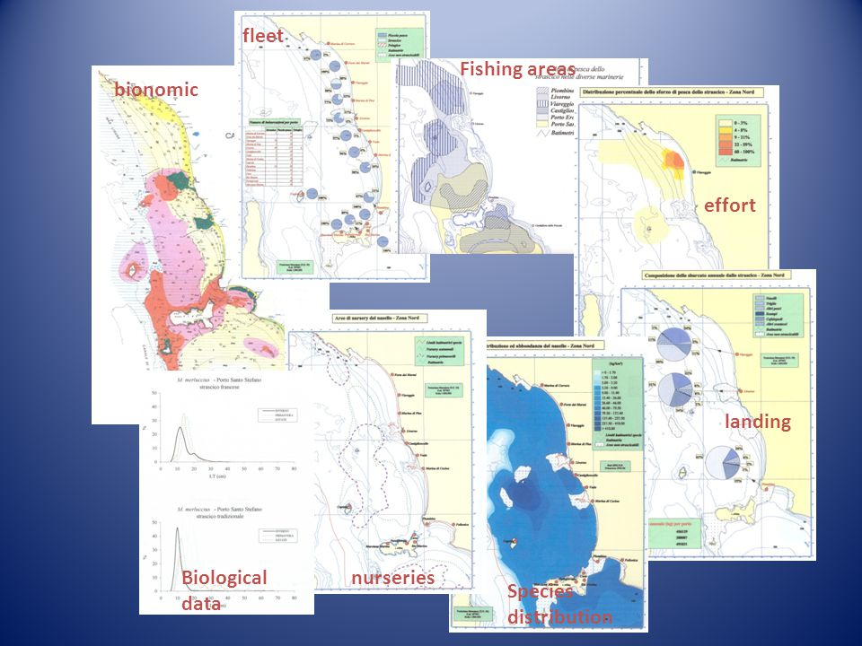 bionomic effort Fishing areas Species distribution nurseriesBiological data fleet landing