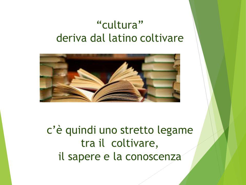 cultura deriva dal latino coltivare c'è quindi uno stretto legame tra il coltivare, il sapere e la conoscenza