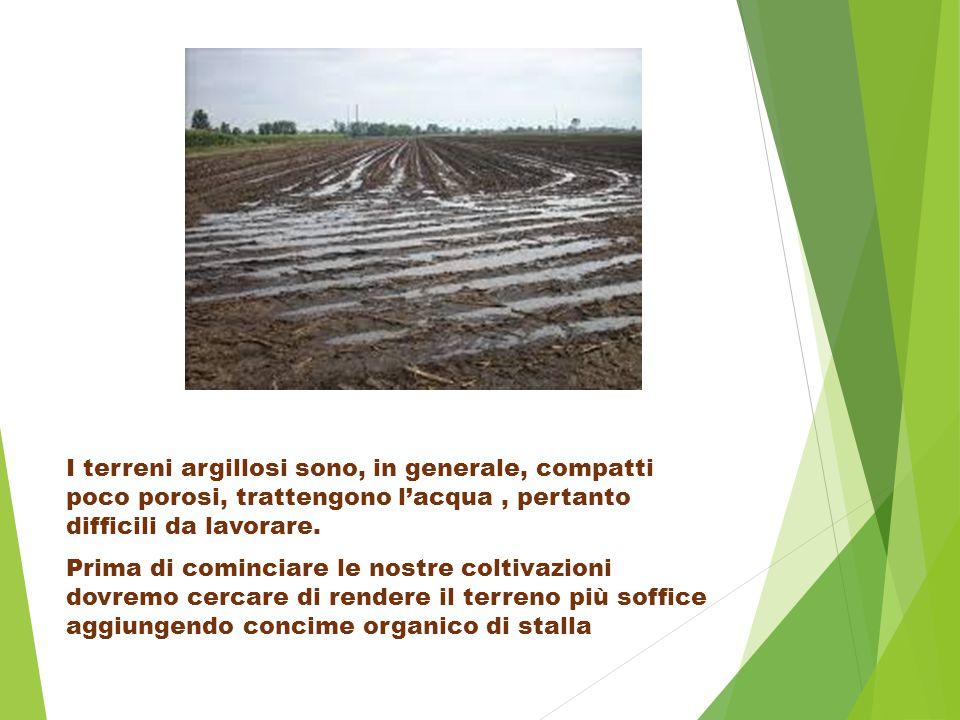 I terreni argillosi sono, in generale, compatti poco porosi, trattengono l'acqua, pertanto difficili da lavorare.