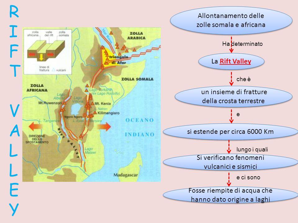 R I F T V A L L E Y La Rift Valley Allontanamento delle zolle somala e africana Ha determinato un insieme di fratture della crosta terrestre si estend