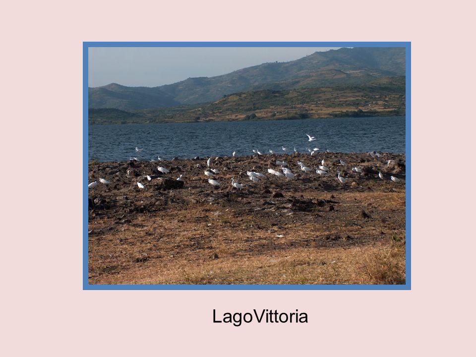 LagoVittoria