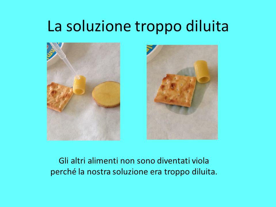 La soluzione troppo diluita Gli altri alimenti non sono diventati viola perché la nostra soluzione era troppo diluita.