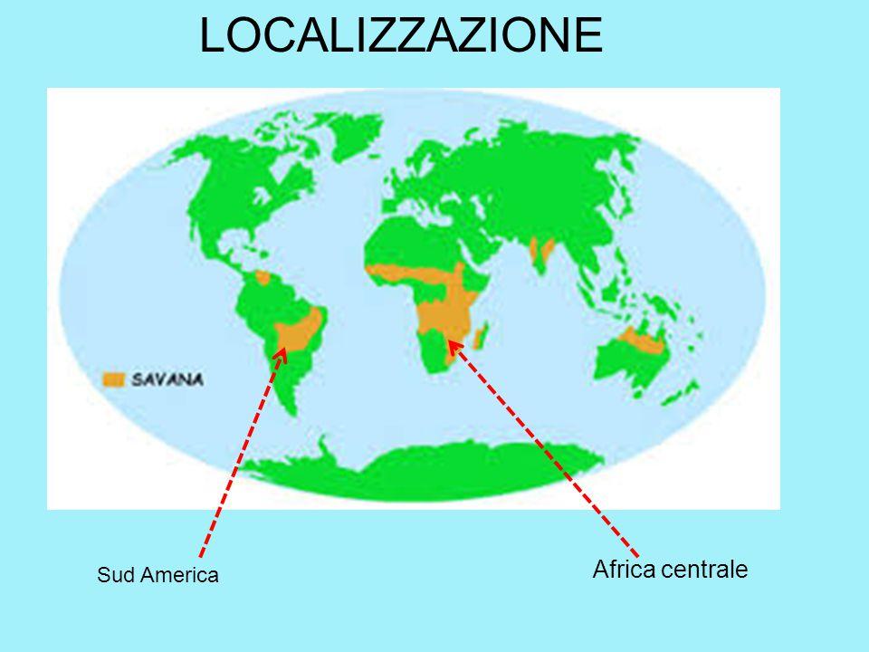 LOCALIZZAZIONE Africa centrale Sud America