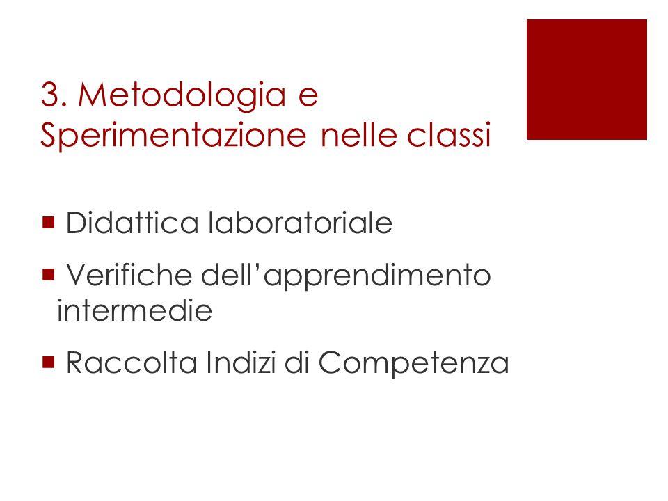 3. Metodologia e Sperimentazione nelle classi  Didattica laboratoriale  Verifiche dell'apprendimento intermedie  Raccolta Indizi di Competenza