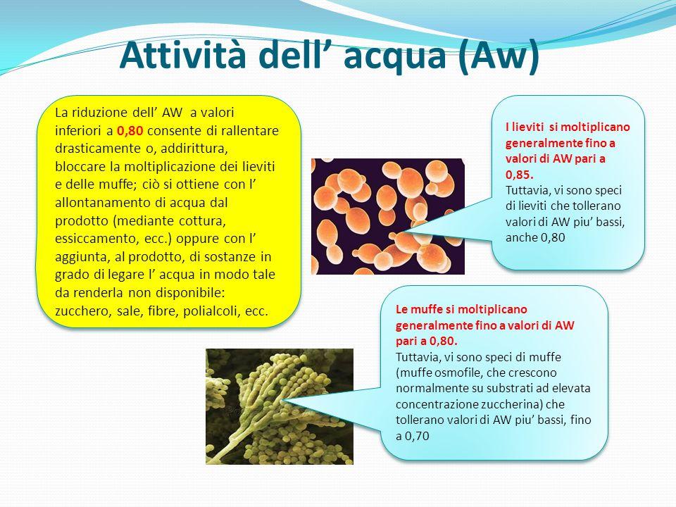 Attività dell' acqua (Aw) I lieviti si moltiplicano generalmente fino a valori di AW pari a 0,85. Tuttavia, vi sono speci di lieviti che tollerano val