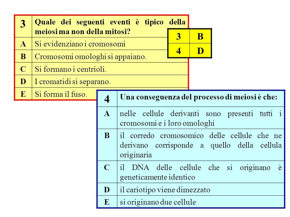 3 Quale dei seguenti eventi è tipico della meiosi ma non della mitosi? ASi evidenziano i cromosomi BCromosomi omologhi si appaiano. CSi formano i cent