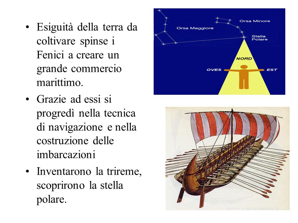 Esiguità della terra da coltivare spinse i Fenici a creare un grande commercio marittimo.