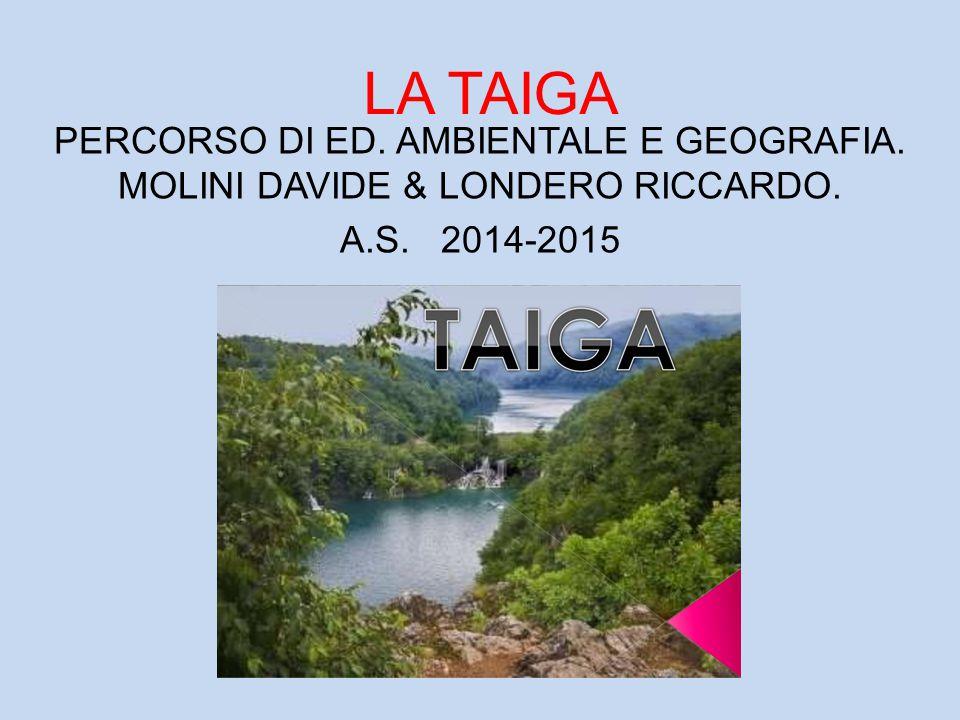 LA TAIGA PERCORSO DI ED. AMBIENTALE E GEOGRAFIA. MOLINI DAVIDE & LONDERO RICCARDO. A.S. 2014-2015