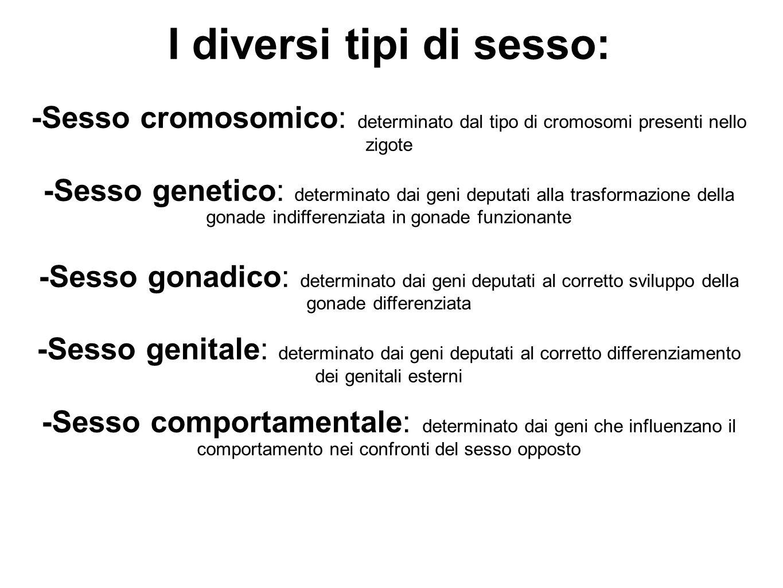 I diversi tipi di sesso: -Sesso cromosomico: determinato dal tipo di cromosomi presenti nello zigote -Sesso genetico: determinato dai geni deputati al