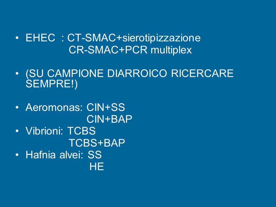 EHEC : CT-SMAC+sierotipizzazione CR-SMAC+PCR multiplex (SU CAMPIONE DIARROICO RICERCARE SEMPRE!) Aeromonas: CIN+SS CIN+BAP Vibrioni: TCBS TCBS+BAP Hafnia alvei: SS HE