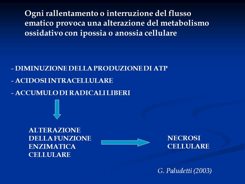 Ogni rallentamento o interruzione del flusso ematico provoca una alterazione del metabolismo ossidativo con ipossia o anossia cellulare - DIMINUZIONE