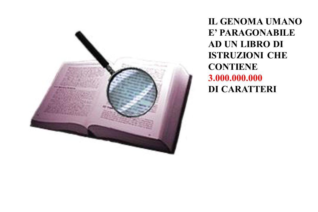 IL GENOMA UMANO E' PARAGONABILE AD UN LIBRO DI ISTRUZIONI CHE CONTIENE 3.000.000.000 DI CARATTERI