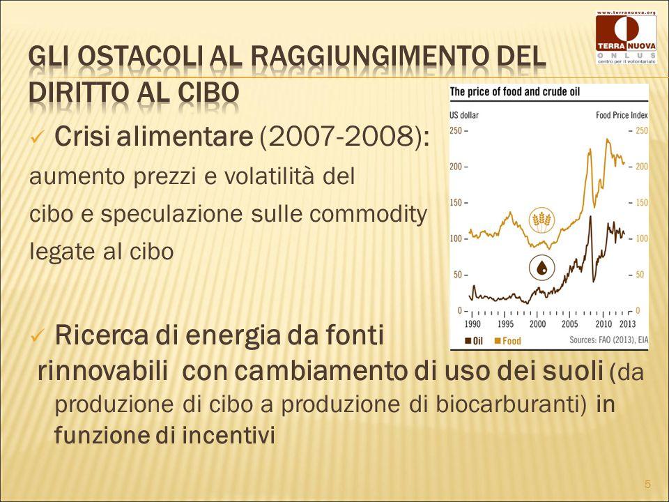 Crisi alimentare (2007-2008): aumento prezzi e volatilità del cibo e speculazione sulle commodity legate al cibo Ricerca di energia da fonti rinnovabili con cambiamento di uso dei suoli (da produzione di cibo a produzione di biocarburanti) in funzione di incentivi 5