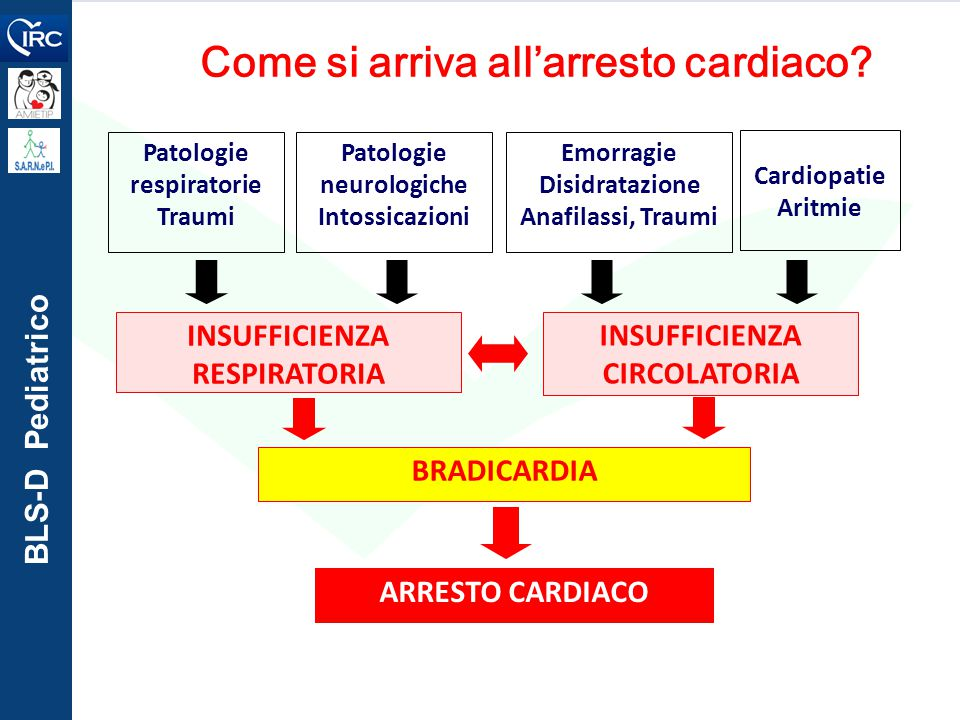BLS-D Pediatrico Come si arriva all'arresto cardiaco.