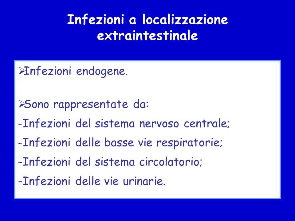 Infezioni a localizzazione extraintestinale  Infezioni endogene.