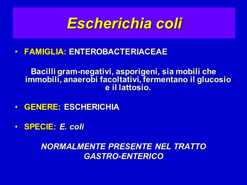 FAMIGLIA: ENTEROBACTERIACEAEFAMIGLIA: ENTEROBACTERIACEAE Bacilli gram-negativi, asporigeni, sia mobili che immobili, anaerobi facoltativi, fermentano il glucosio e il lattosio.