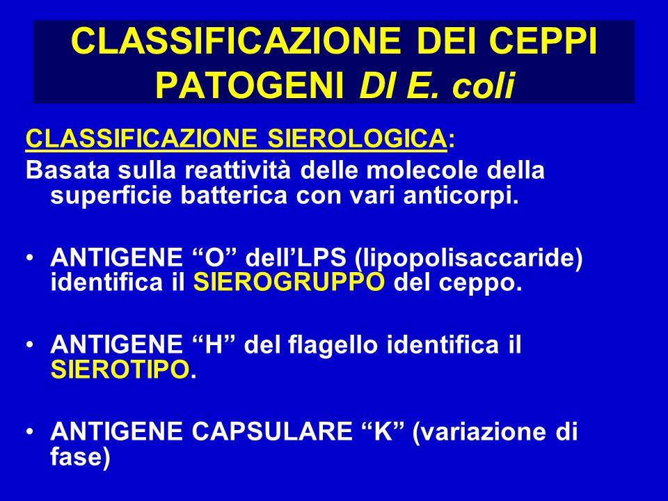 CLASSIFICAZIONE DEI CEPPI PATOGENI DI E.