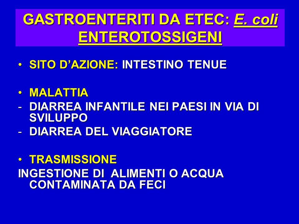 GASTROENTERITI DA ETEC: E.