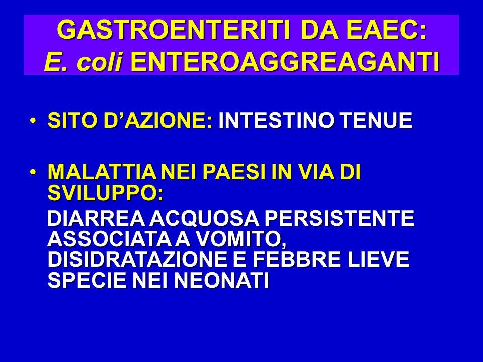 GASTROENTERITI DA EAEC: E.