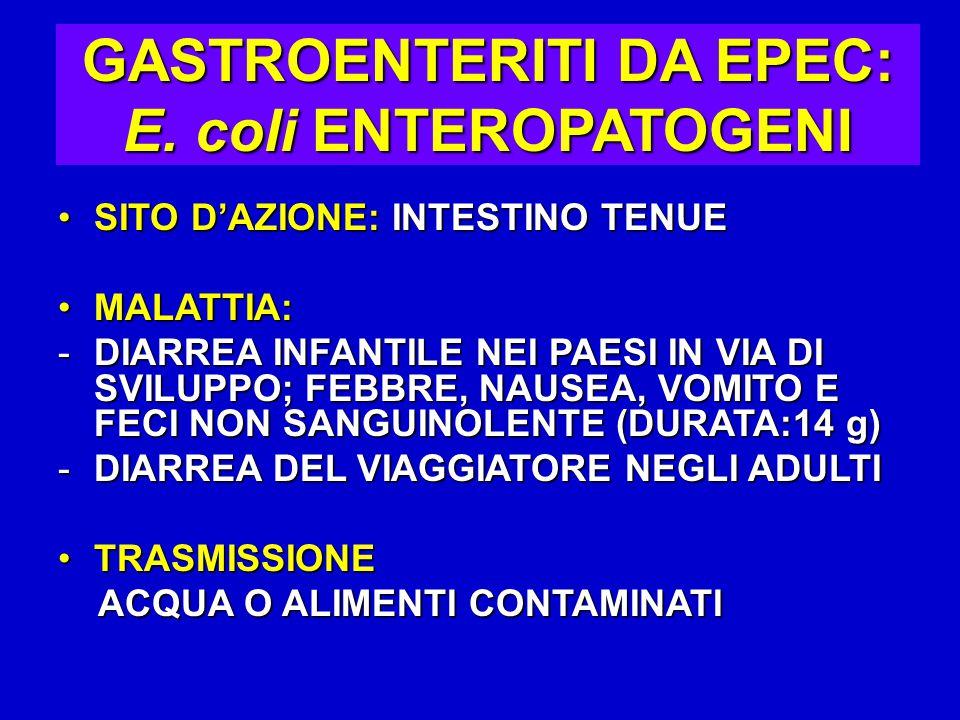 GASTROENTERITI DA EPEC: E.