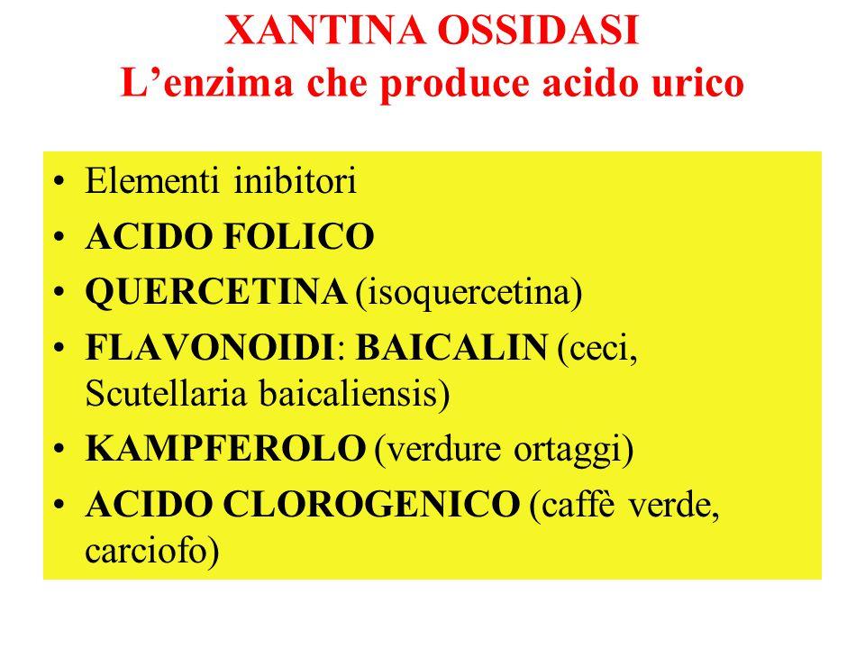 XANTINA OSSIDASI L'enzima che produce acido urico Elementi inibitori ACIDO FOLICO QUERCETINA (isoquercetina) FLAVONOIDI: BAICALIN (ceci, Scutellaria b