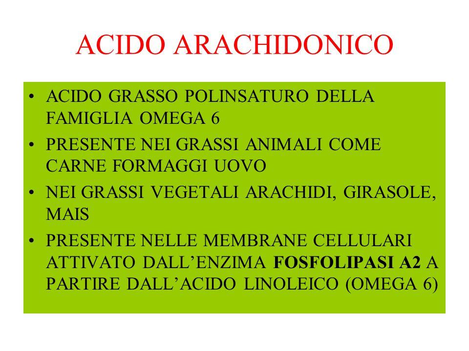 ACIDO ARACHIDONICO ACIDO GRASSO POLINSATURO DELLA FAMIGLIA OMEGA 6 PRESENTE NEI GRASSI ANIMALI COME CARNE FORMAGGI UOVO NEI GRASSI VEGETALI ARACHIDI,