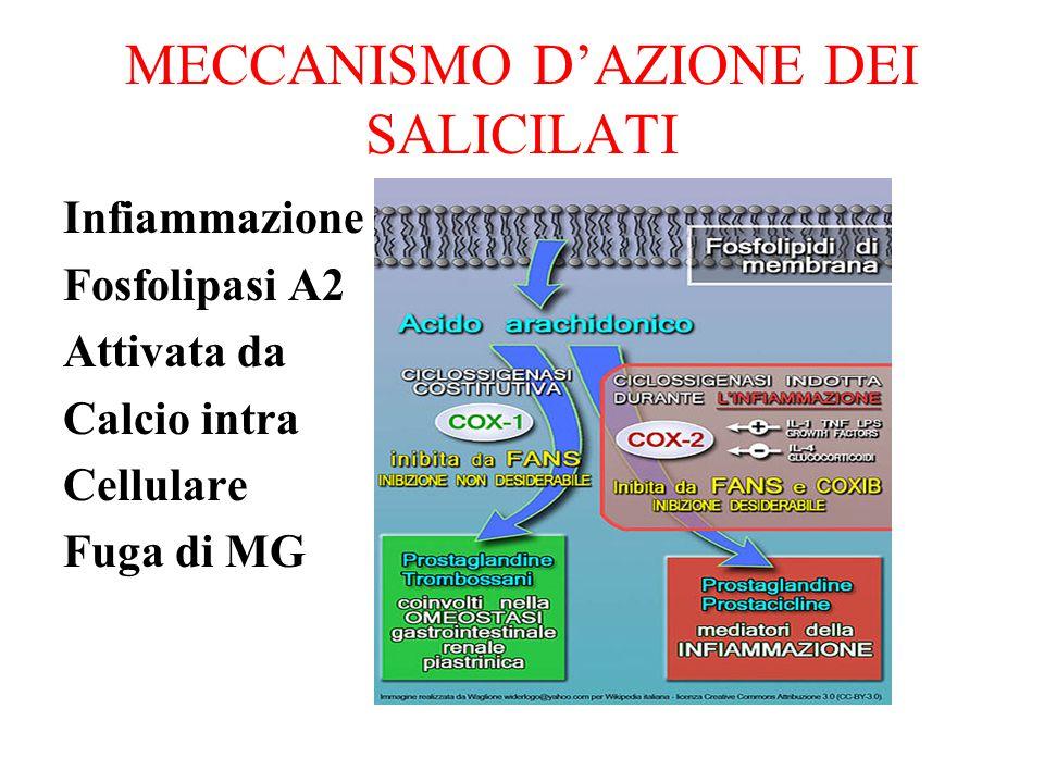 MECCANISMO D'AZIONE DEI SALICILATI Infiammazione Fosfolipasi A2 Attivata da Calcio intra Cellulare Fuga di MG