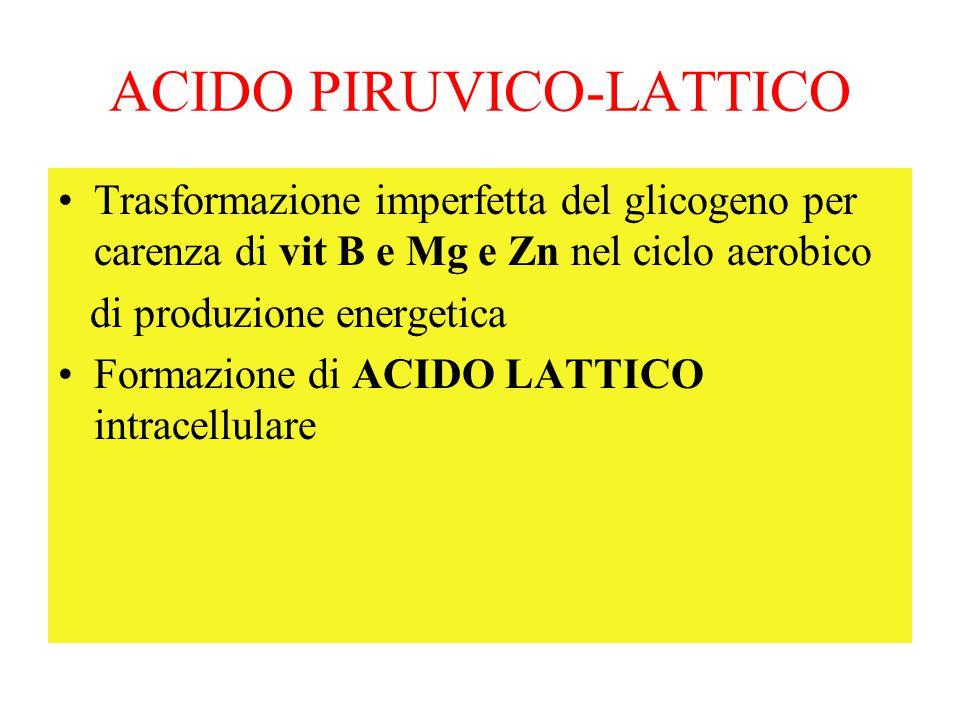 ACIDO PIRUVICO-LATTICO Trasformazione imperfetta del glicogeno per carenza di vit B e Mg e Zn nel ciclo aerobico di produzione energetica Formazione d