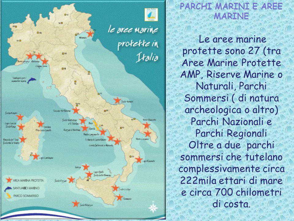 PARCHI MARINI E AREE MARINE Le aree marine protette sono 27 (tra Aree Marine Protette AMP, Riserve Marine o Naturali, Parchi Sommersi ( di natura archeologica o altro) Parchi Nazionali e Parchi Regionali Oltre a due parchi sommersi che tutelano complessivamente circa 222mila ettari di mare e circa 700 chilometri di costa.