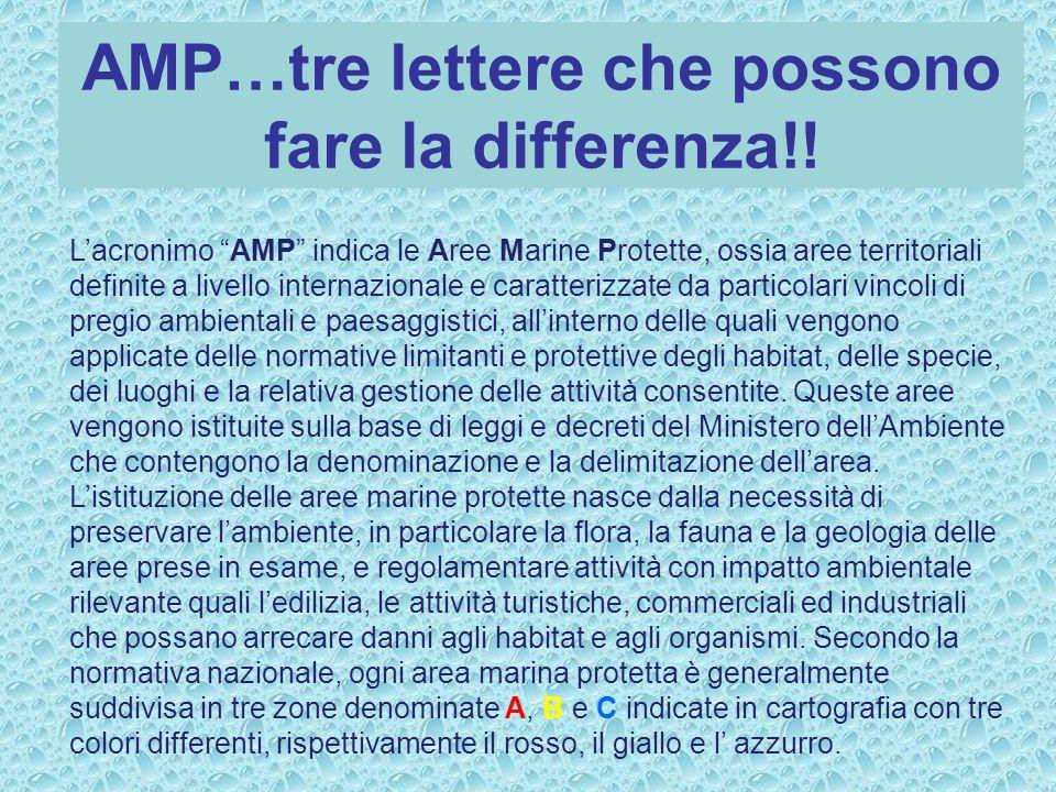 AMP…tre lettere che possono fare la differenza!.