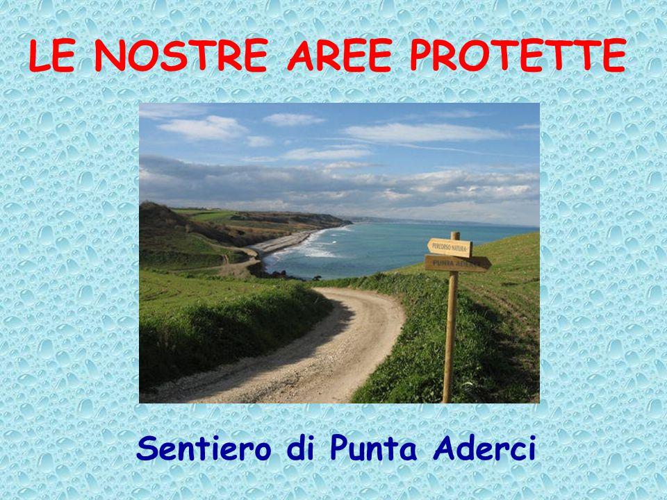 LE NOSTRE AREE PROTETTE Sentiero di Punta Aderci