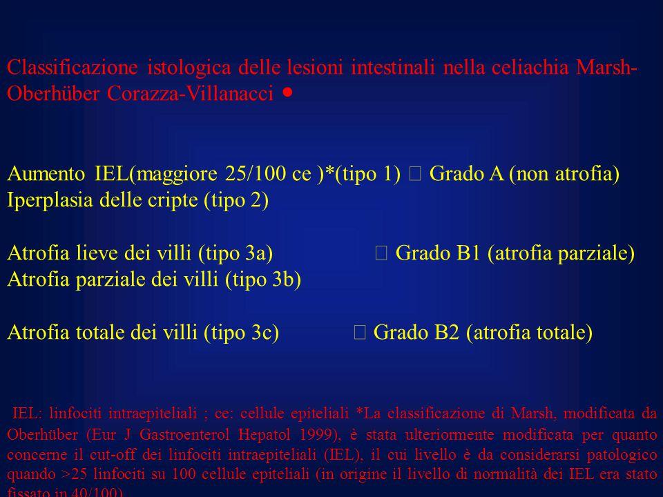 Classificazione istologica delle lesioni intestinali nella celiachia Marsh- Oberhüber Corazza-Villanacci ● Aumento IEL(maggiore 25/100 ce )*(tipo 1) 