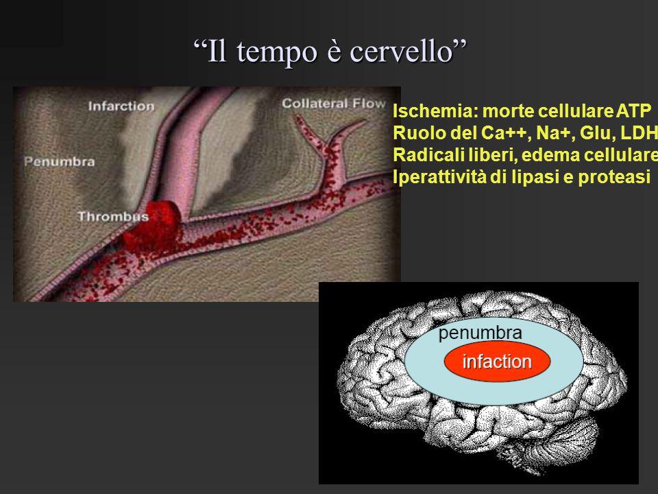 """""""Il tempo è cervello"""" Ischemia: morte cellulare ATP Ruolo del Ca++, Na+, Glu, LDH, Radicali liberi, edema cellulare, Iperattività di lipasi e proteasi"""
