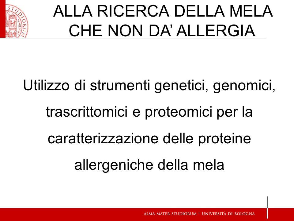 ALLA RICERCA DELLA MELA CHE NON DA' ALLERGIA Utilizzo di strumenti genetici, genomici, trascrittomici e proteomici per la caratterizzazione delle proteine allergeniche della mela