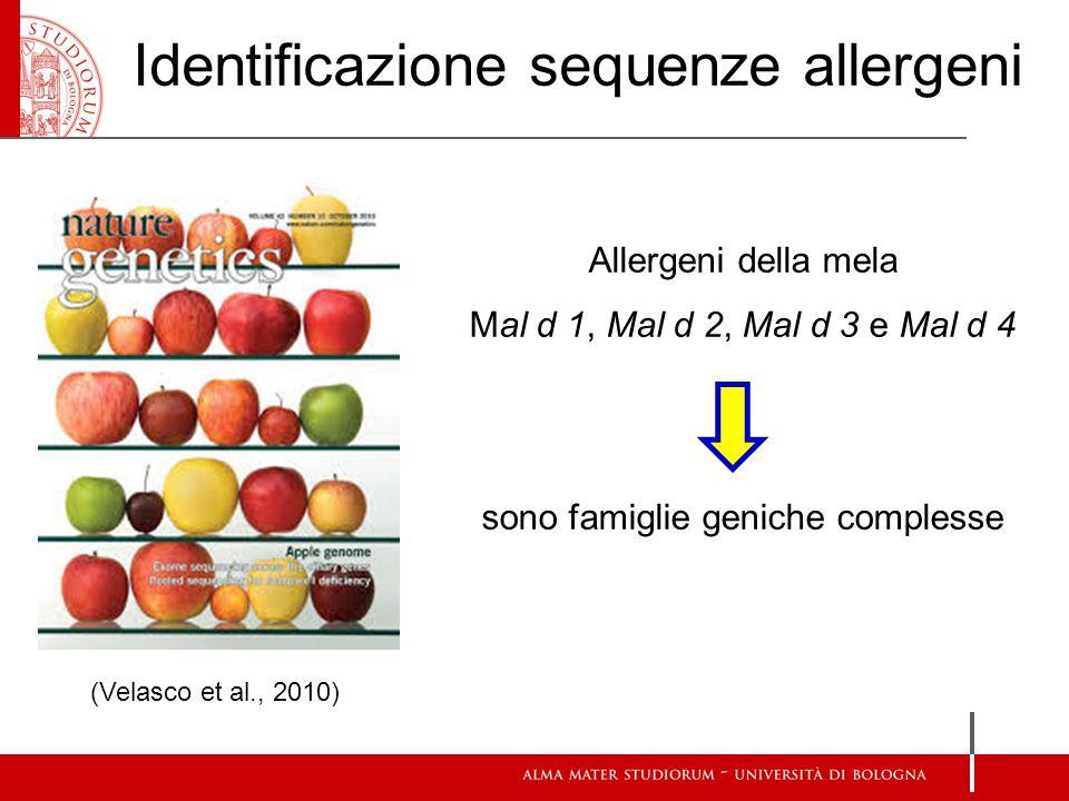 (Velasco et al., 2010) Identificazione sequenze allergeni Allergeni della mela Mal d 1, Mal d 2, Mal d 3 e Mal d 4 sono famiglie geniche complesse