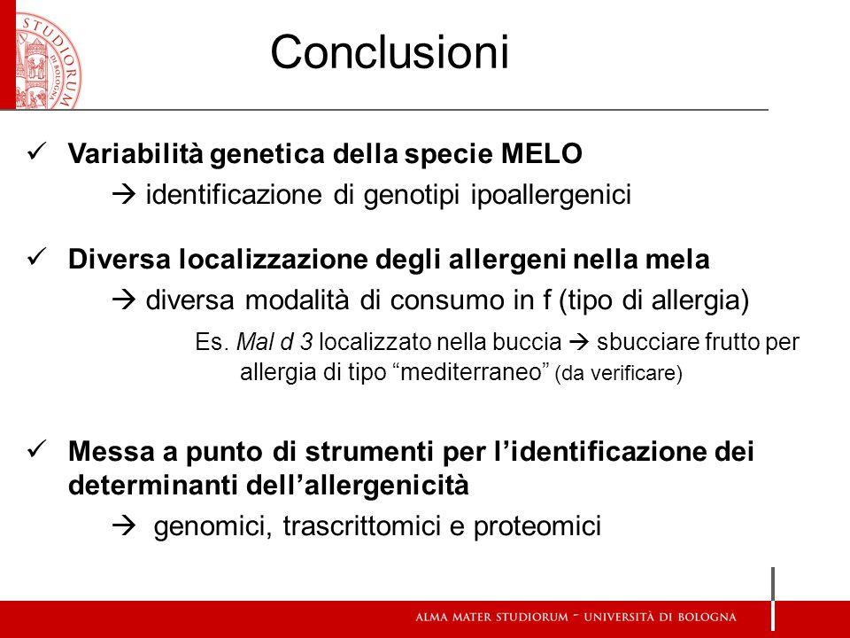 Variabilità genetica della specie MELO  identificazione di genotipi ipoallergenici Diversa localizzazione degli allergeni nella mela  diversa modalità di consumo in f (tipo di allergia) Es.