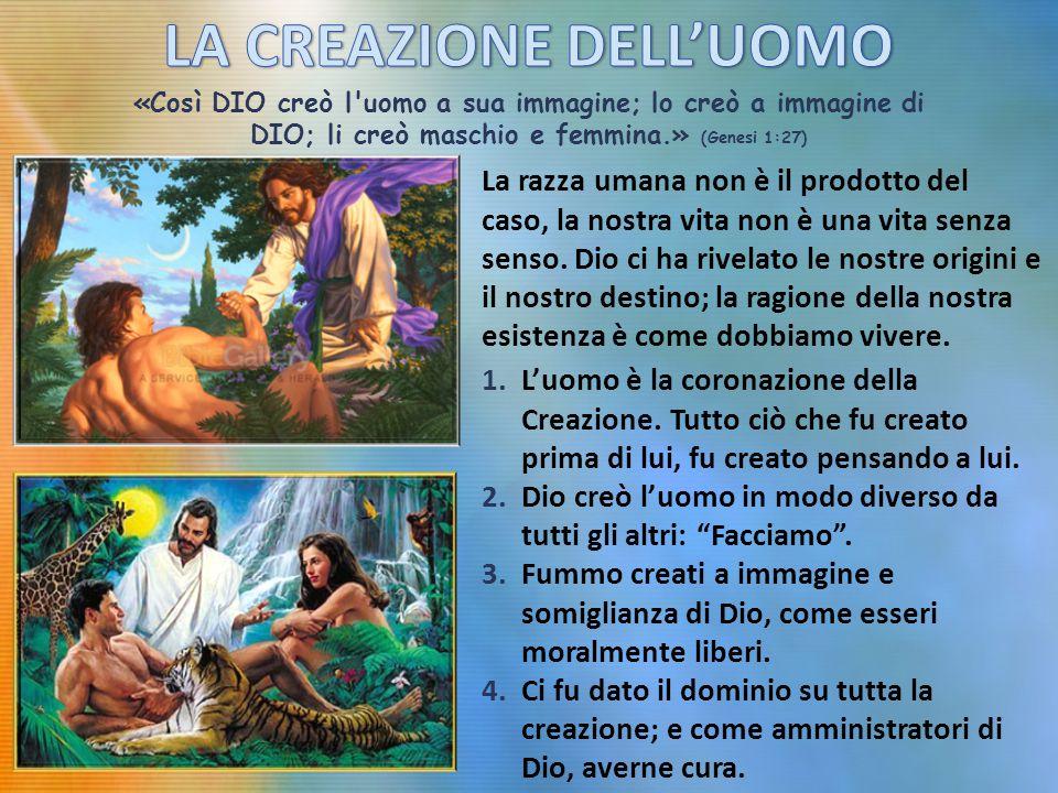 «Così DIO creò l uomo a sua immagine; lo creò a immagine di DIO; li creò maschio e femmina.» (Genesi 1:27) La razza umana non è il prodotto del caso, la nostra vita non è una vita senza senso.