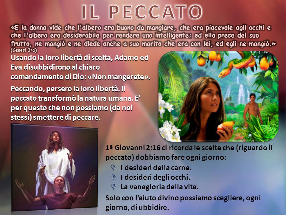 Usando la loro libertà di scelta, Adamo ed Eva disubbidirono al chiaro comandamento di Dio: «Non mangerete».