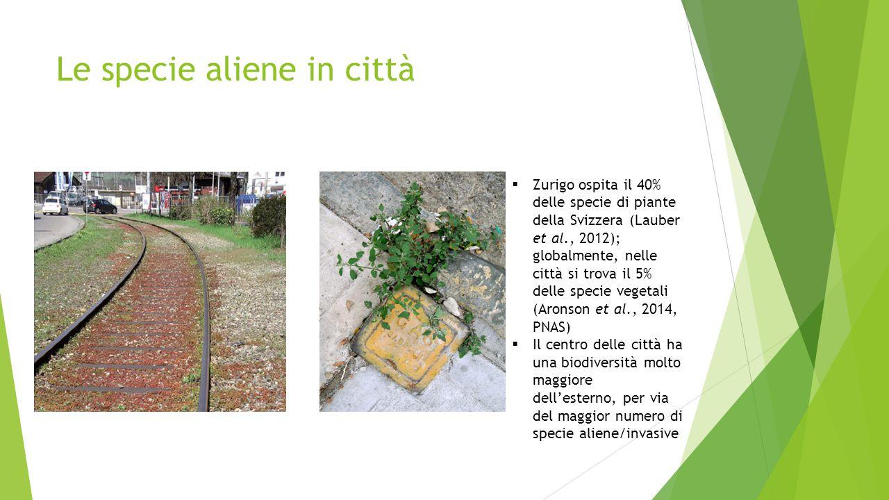 Le specie aliene in città  Zurigo ospita il 40% delle specie di piante della Svizzera (Lauber et al., 2012); globalmente, nelle città si trova il 5% delle specie vegetali (Aronson et al., 2014, PNAS)  Il centro delle città ha una biodiversità molto maggiore dell'esterno, per via del maggior numero di specie aliene/invasive